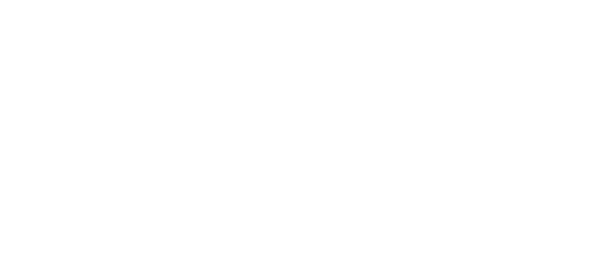 White Priority Graphics logo