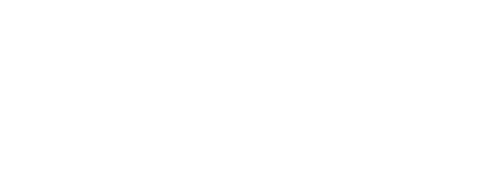 White Priority Promotions logo